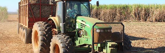 agricola-setor